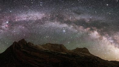 Photo of A galactic archaeologist digs into the Milky Way's history